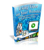 Thumbnail Using Video on Your Websites ++With MRR++